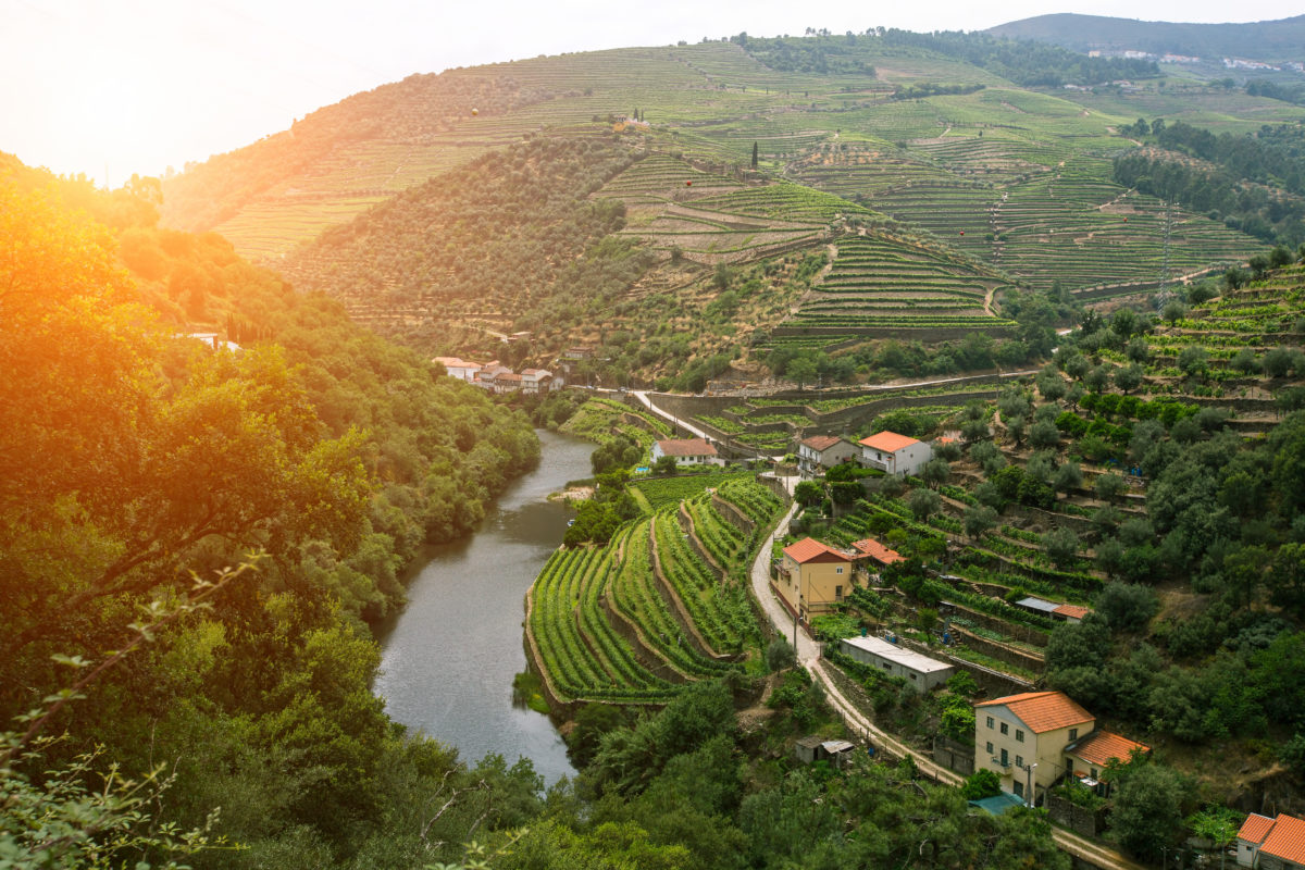 The steeply terraced Douro Valley is one of the world's oldest demarcated wine regions and a UNESCO world heritage site.